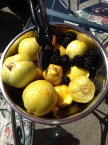 Lemon cucumbers and blackberries.