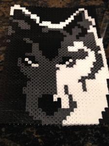 Huge Wolf!