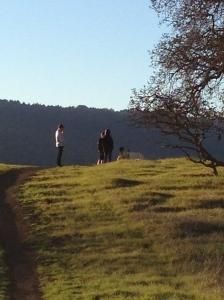 Arastradero Park-Los Altos