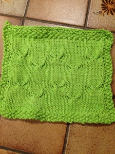Most recent dish cloth.