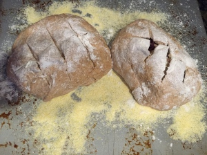 Peasant Bread and Olive Bread waiting to go into the oven.